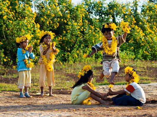 khung cảnh bình yêu khi trẻ con chơi đùa cùng hoa dã quỳ